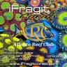 iFragit Corals